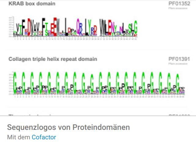 sequenzlogos Liste mit Google Data Studio Report Templates